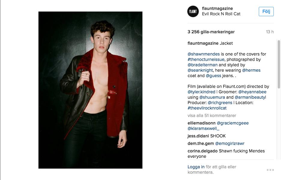 Shawn-Mendes-Flaunt-magazine-2