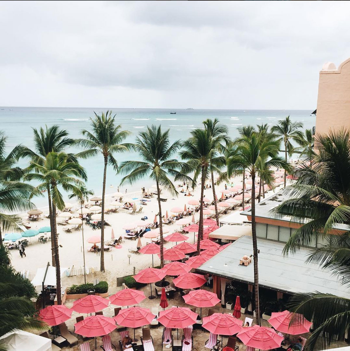Rosa-hotell-hawaii-12